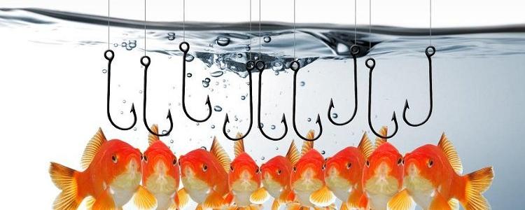 Phishing!!!