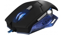 Mouse NOD G-MSE-5B